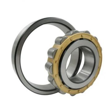 ISO BK4020 cylindrical roller bearings